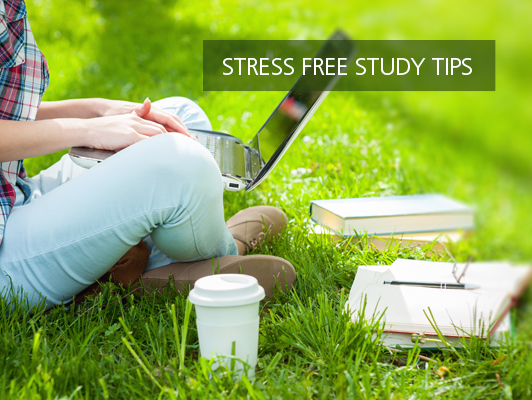 stress frees study tips